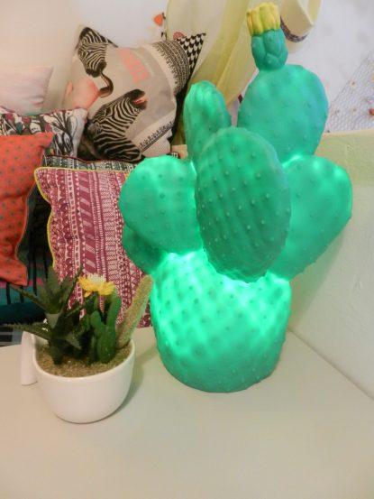 Lampe cactus à led.Rose Citron 2016