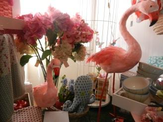 flamants roses en plumes.Rose Citron 2016