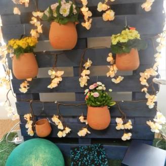 jardin sur palette.Rose citron 2018